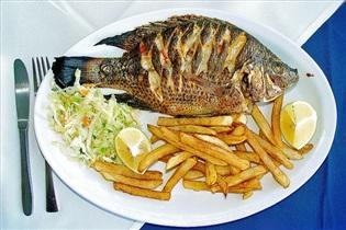 آیا تیلاپیا ماهی خطرناکی است؟/همراه با نکته هایی در مورد ماهی های پرورشی